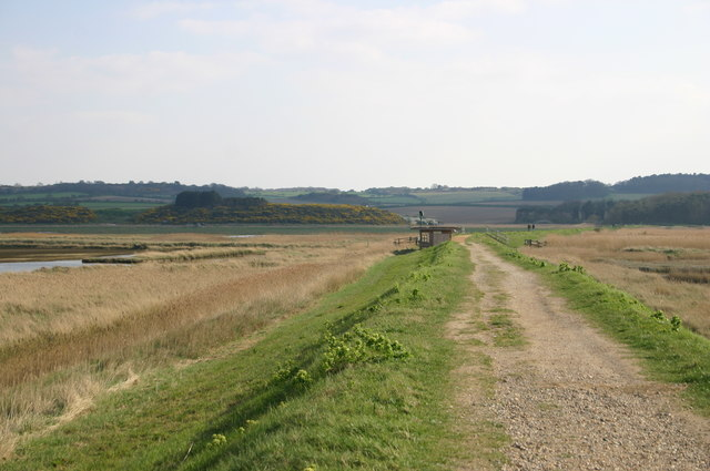 Path heading through Cley Marshes