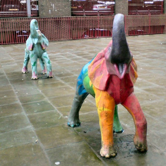 Two of Bolton's Elephants