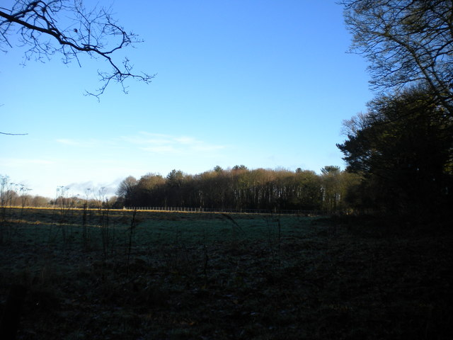 Frosty field north of Wergs Plantation