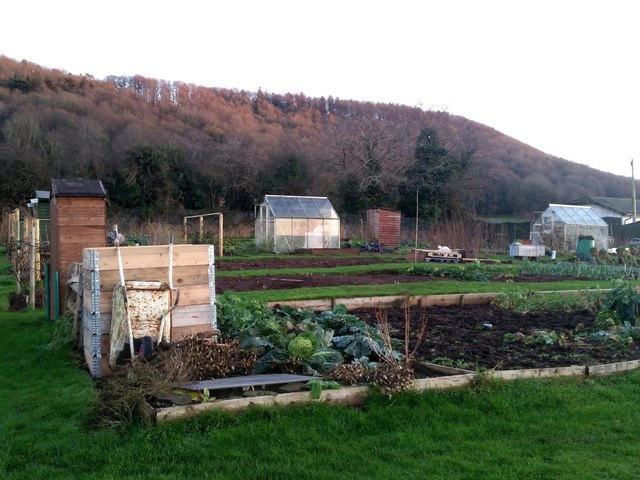 Tudorville allotments