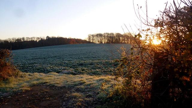 Frosty November dawn