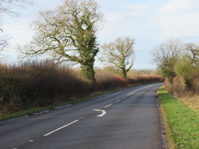 Trench Lane Near Alcester