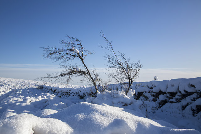 Bleak mid-winter on the Southern Upland Way