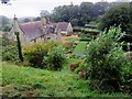 SZ4083 : Mottistone Manor from the Olive Grove by Steve Daniels