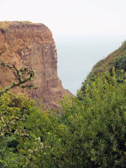 The cliff at Whale Chine