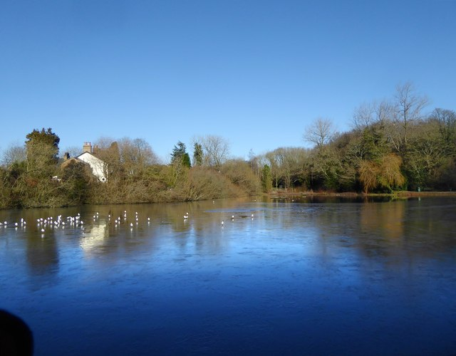 Mere Pond, Walton on the Hill - frozen over
