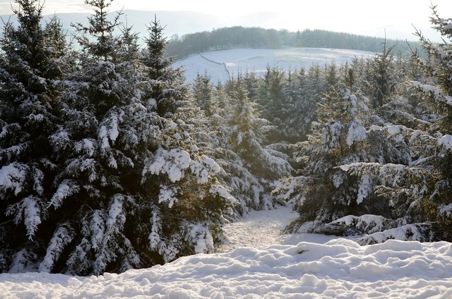 Snow and winter sunshine, Ven Law
