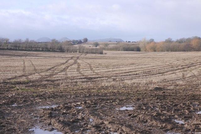 View towards the Breidden Hills