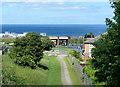 NZ4248 : Swine Lodge Bank path at Seaham by Mat Fascione