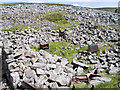 NY6635 : Ruined structure with iron artefacts by Trevor Littlewood