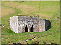 NY6434 : Townhead Lime Kiln by Trevor Littlewood