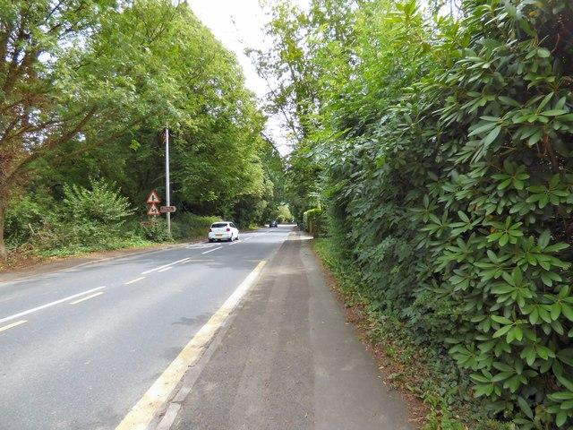 Hall Lane, Mobberley