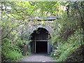SP7479 : North portal of Kelmarsh tunnel by Tim Glover