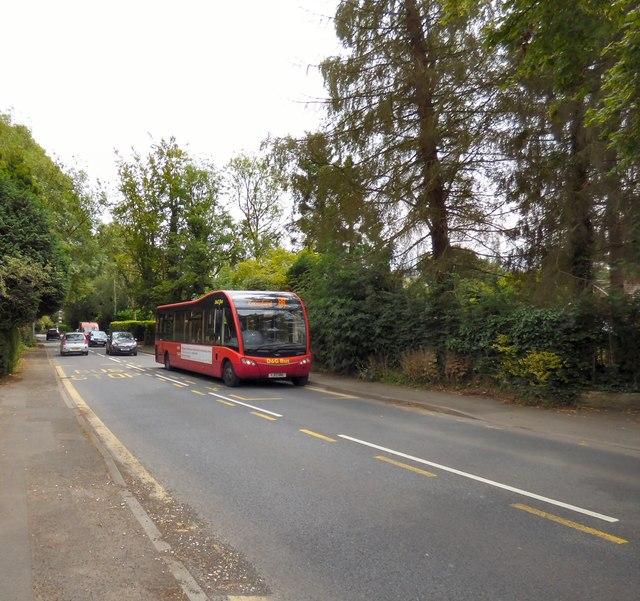 Bus stop on Hall Lane