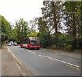 SJ7979 : Bus stop on Hall Lane by Gerald England
