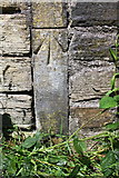 SE1537 : Benchmark on gatepost in wall beside Leeds & Liverpool Canal by Roger Templeman