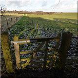 SJ6367 : Bridleway at Gale Green Farm by Stephen Craven