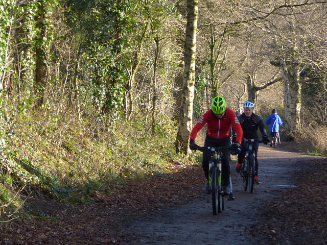 Cyclists on the Whitegate Way