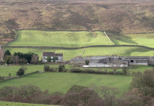 Grange Farm at the start of 2018