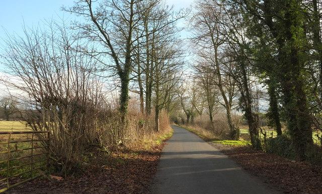 Beryl Burton Cycleway
