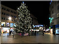 SJ3490 : Christmas Tree on Church Street by David Dixon