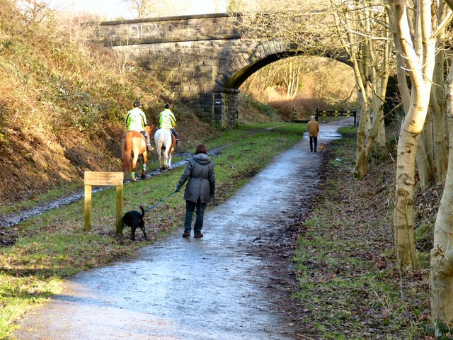 Horse riders and dog walkers
