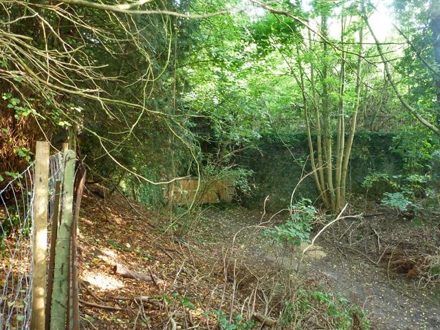 Old railway cutting, Bartlow