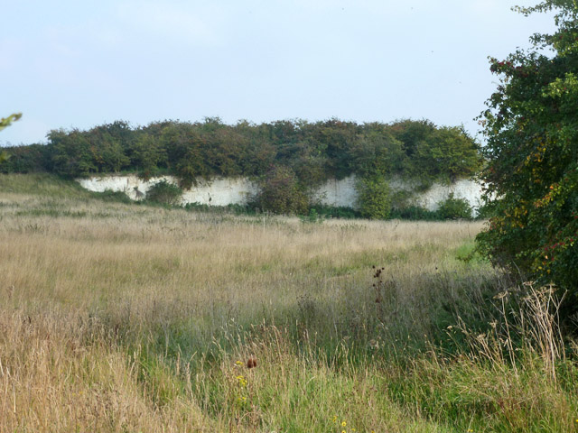 Old chalk quarry
