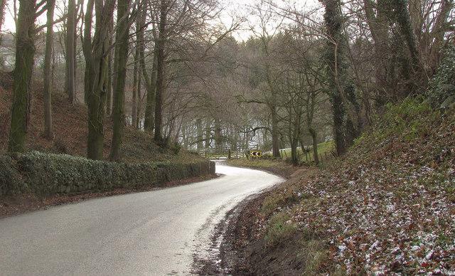 Lane near Fountains Hall