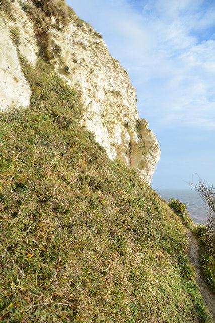 East Devon : Cliff Scenery