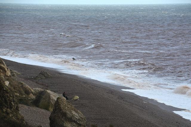 East Devon : Hooken Beach