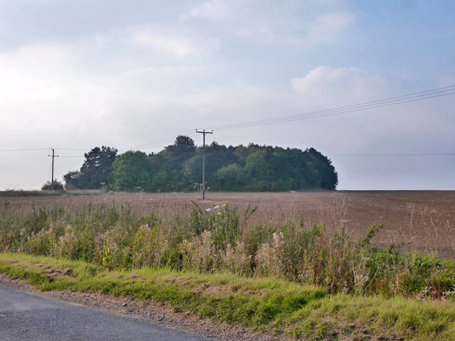 Wood north of Chapel Road