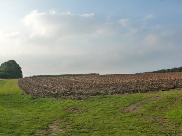 Ploughed field by Grange Road