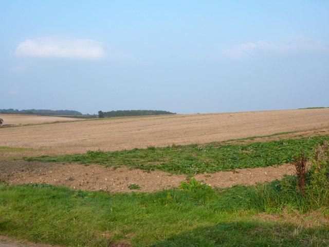 Stubble field by Grange Road