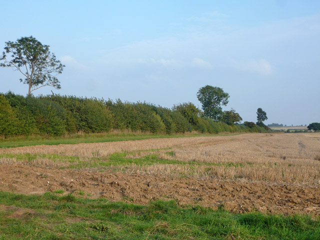Ditch, hedge and parish boundary