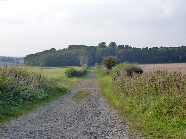 Drive to former Carlton Grange