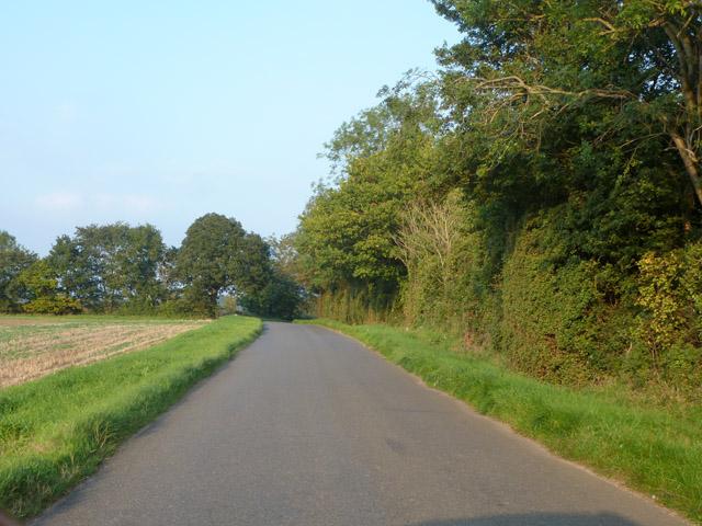 Balsham Lane