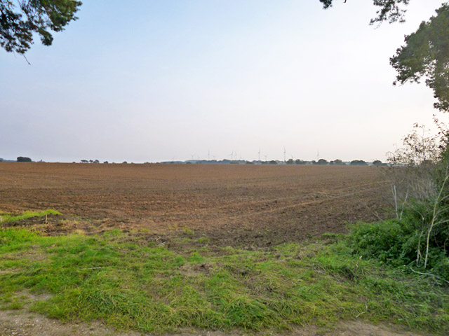 Cultivated field, Six Mile Bottom