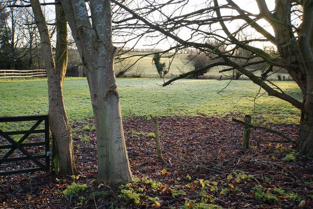 Field near Grove End Farm