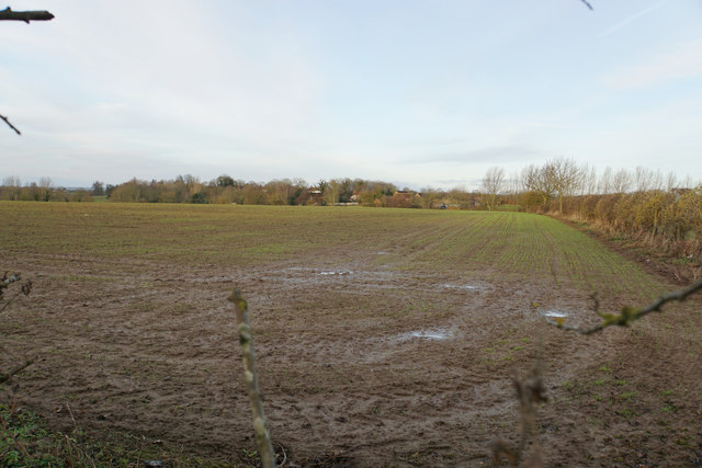 Field near Grove End Farm