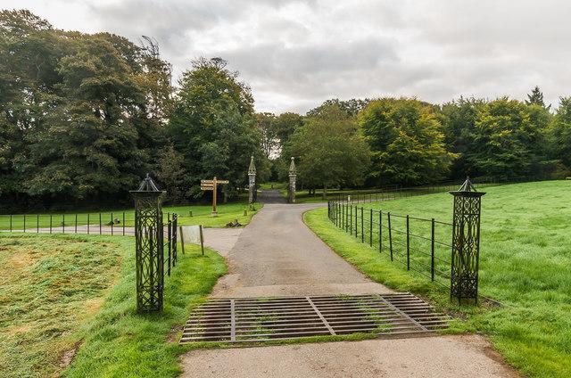 Cattle grid, Trelowarren