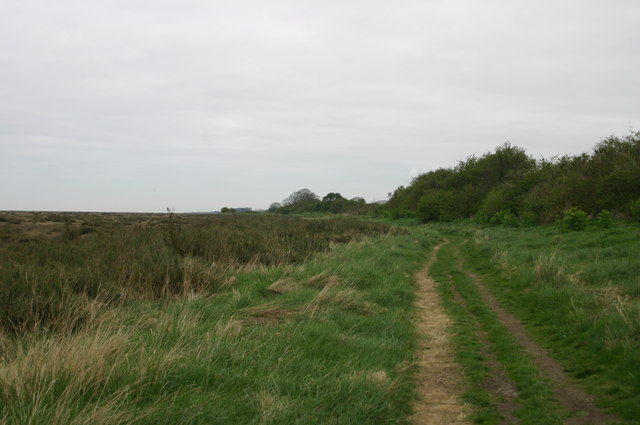 Path heading to Warham Greens