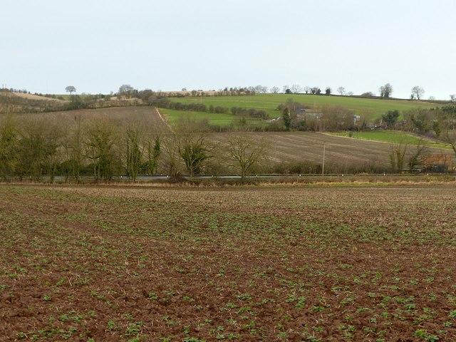 Landscape near Risley