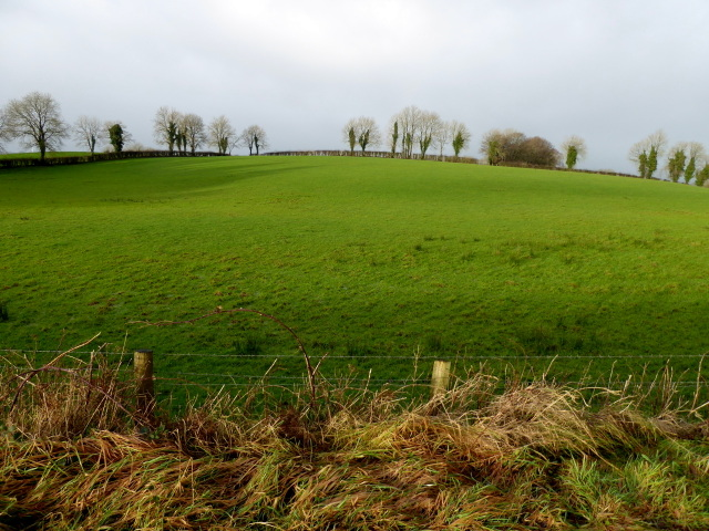 Lisnarable Townland