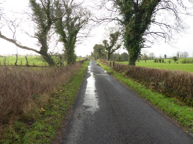 Killadroy Road