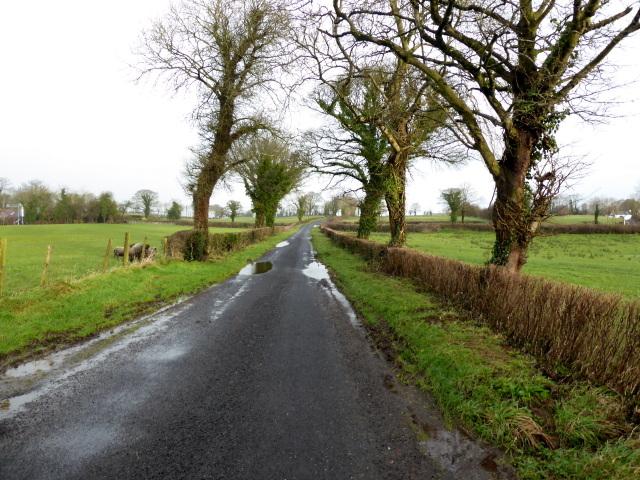 Killadroy Road, Fernaghandrum