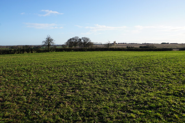 Field near Brownsfields Farm