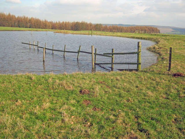 Pond on Calton Pastures