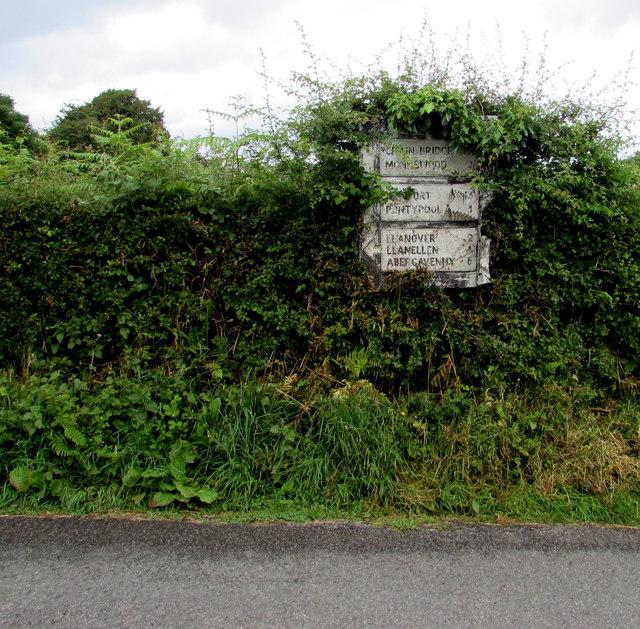 Pre-Worboys sign in a Park y Brain hedge, Penperlleni