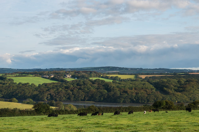 Down to the Helford River